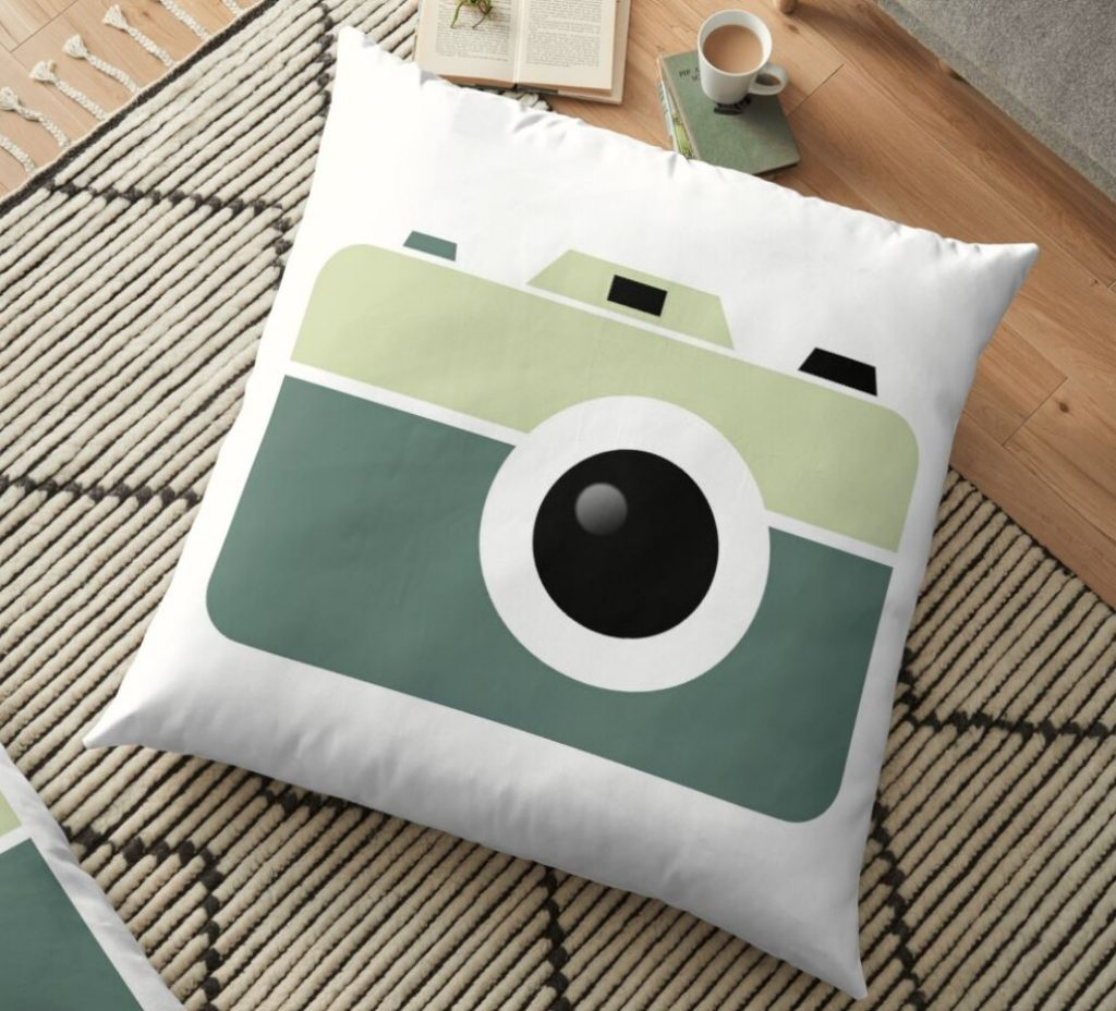 gift idea of camera pillow
